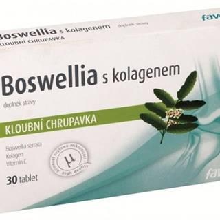 Boswellia S chondroitínom a kolagénom
