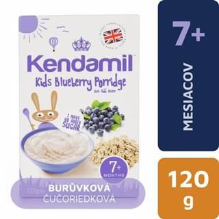 KENDAMIL Čučoriedková kaša