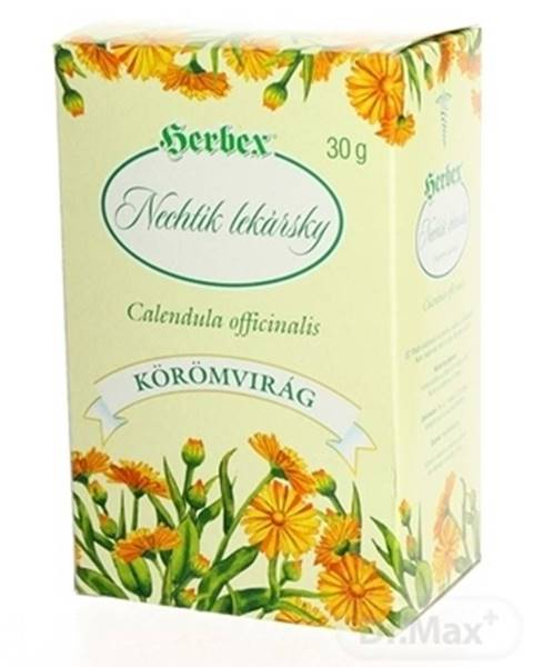 Herbex nechtík lekársky - kvet