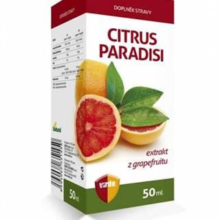 Virde Citrus paradisi